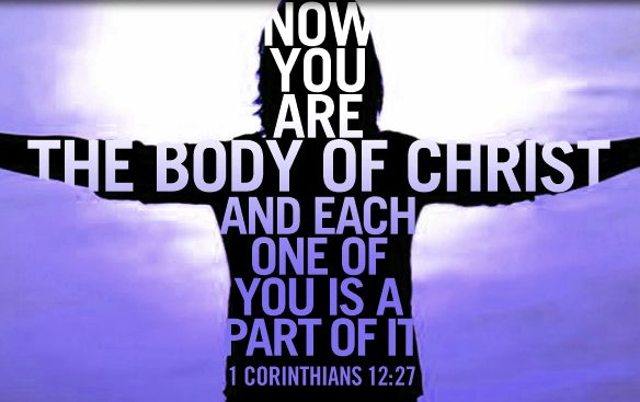 Working Together To Build A Healthy Body Of Christ