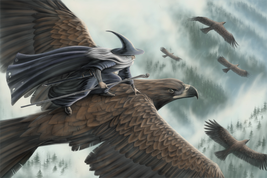 Freedom To Soar: Taking Risks In Faith